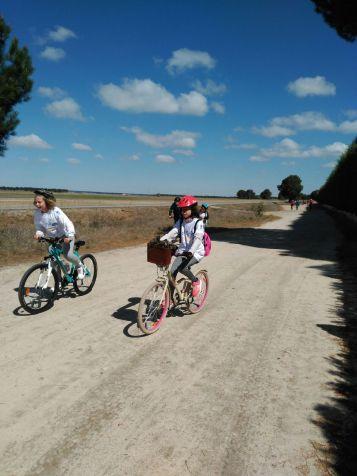 Ruta en bici pinar_19
